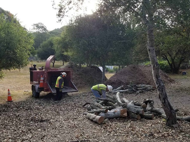 Oakhurst Proffesional Tree Services